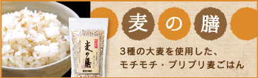 3種の大麦を使用「麦の膳」